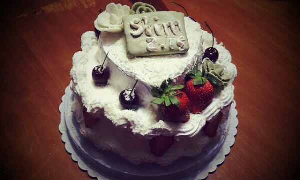 装饰蛋糕双层生日蛋糕的家常做法 装饰蛋糕双层生日蛋糕的做法大全 图片