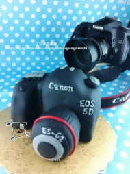 再做佳能5D相机翻糖蛋