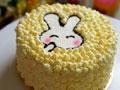 兔子生日蛋糕