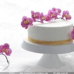 蝴蝶兰翻糖蛋糕
