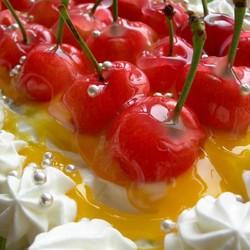 水果蛋糕条