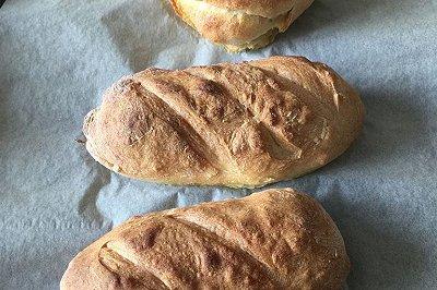 野生酵母酸面包