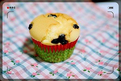 蓝莓干杯子蛋糕记录